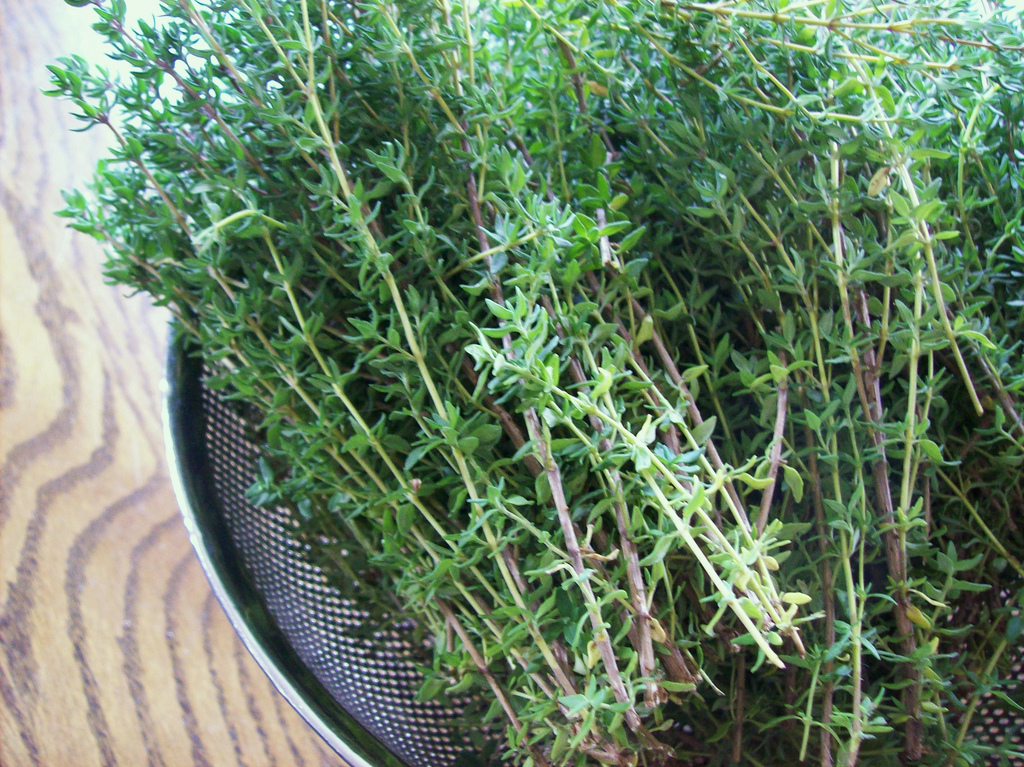 Thyme | Homemade Recipes For Cold And Flu